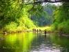 Chức năng và nhiệm vụ của Ban quản lý Vườn quốc gia Bù Gia Mập