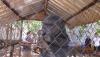 Thông tin người dân tự nguyện giao nộp động vật hoang dã